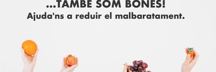 veritas_andorra_malbaratament_alimentari