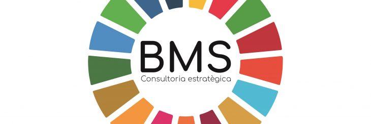 BMS-consultoria-estrategica