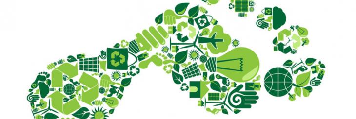 La petjada de carboni: el primer pas per a millorar la sostenibilitat d'empreses i institucions
